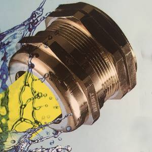Cable gland Đồng thau mạ niken M 1608BR
